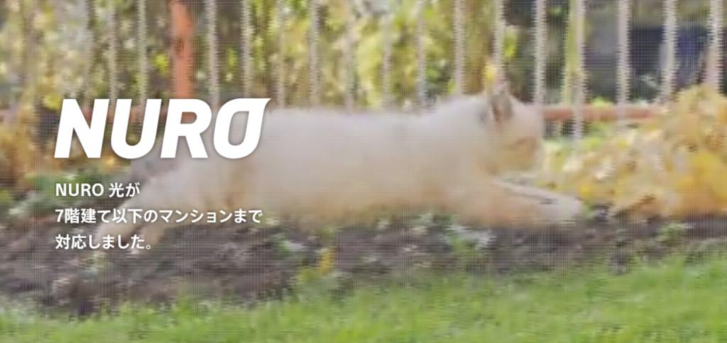 関西でもNURO光が契約できる!?大阪・京都・神戸の速い回線にしたい人におすすめ