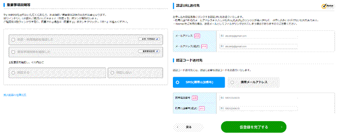Try WiMAX仮申し込み